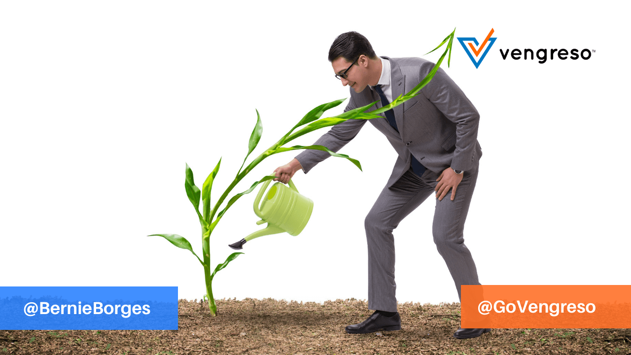 business man watering plant metaphor business growth - SEO