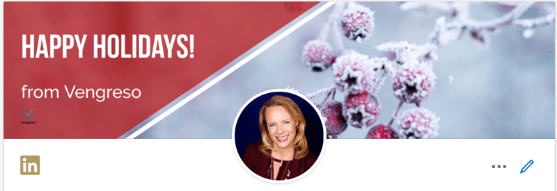 Holiday LinkedIn Banner Viveka von Rosen